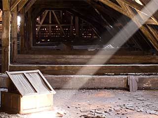 Attic Cleaning Services | Attic Cleaning Walnut Creek, CA